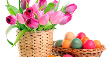 Easter gifts buy easter gifts online at best price easter gifts flowers online negle Images