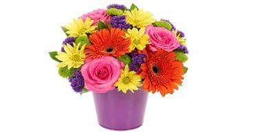 online Flower Vase delivery in Ahmedabad